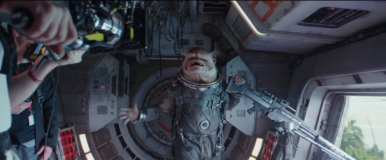 Star Wars Rogue One space monkey
