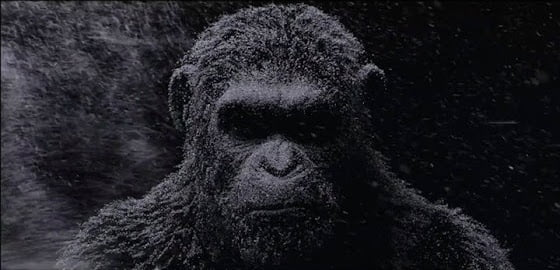 war-for-the-planet-of-the-apes-banner
