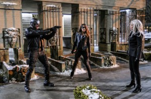 arrow dig and dinah face down china white