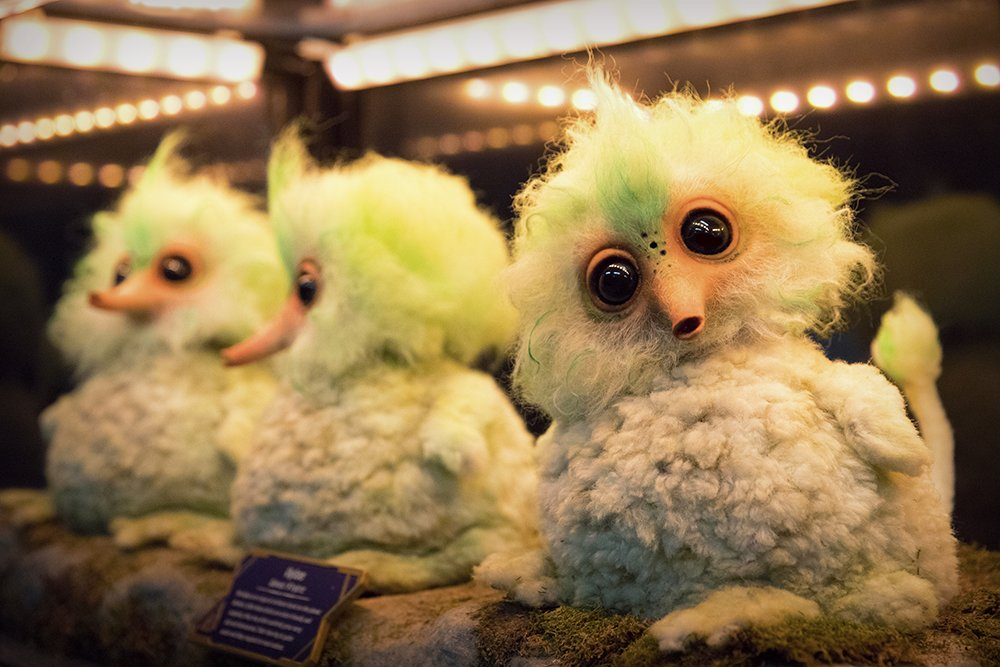 James Gunn Shares What Those Birds Were In 'Guardians of the Galaxy Vol 2'