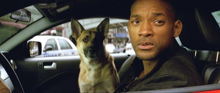 "An 'I Am Legend' Sequel Would Have Been ""Dumb"" According To Director Francis Lawrence"