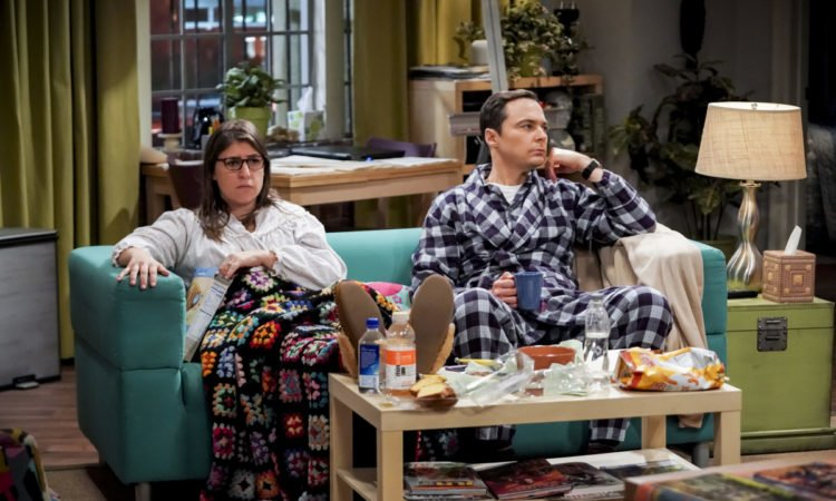 The Big Bang Theory The Citation Negation