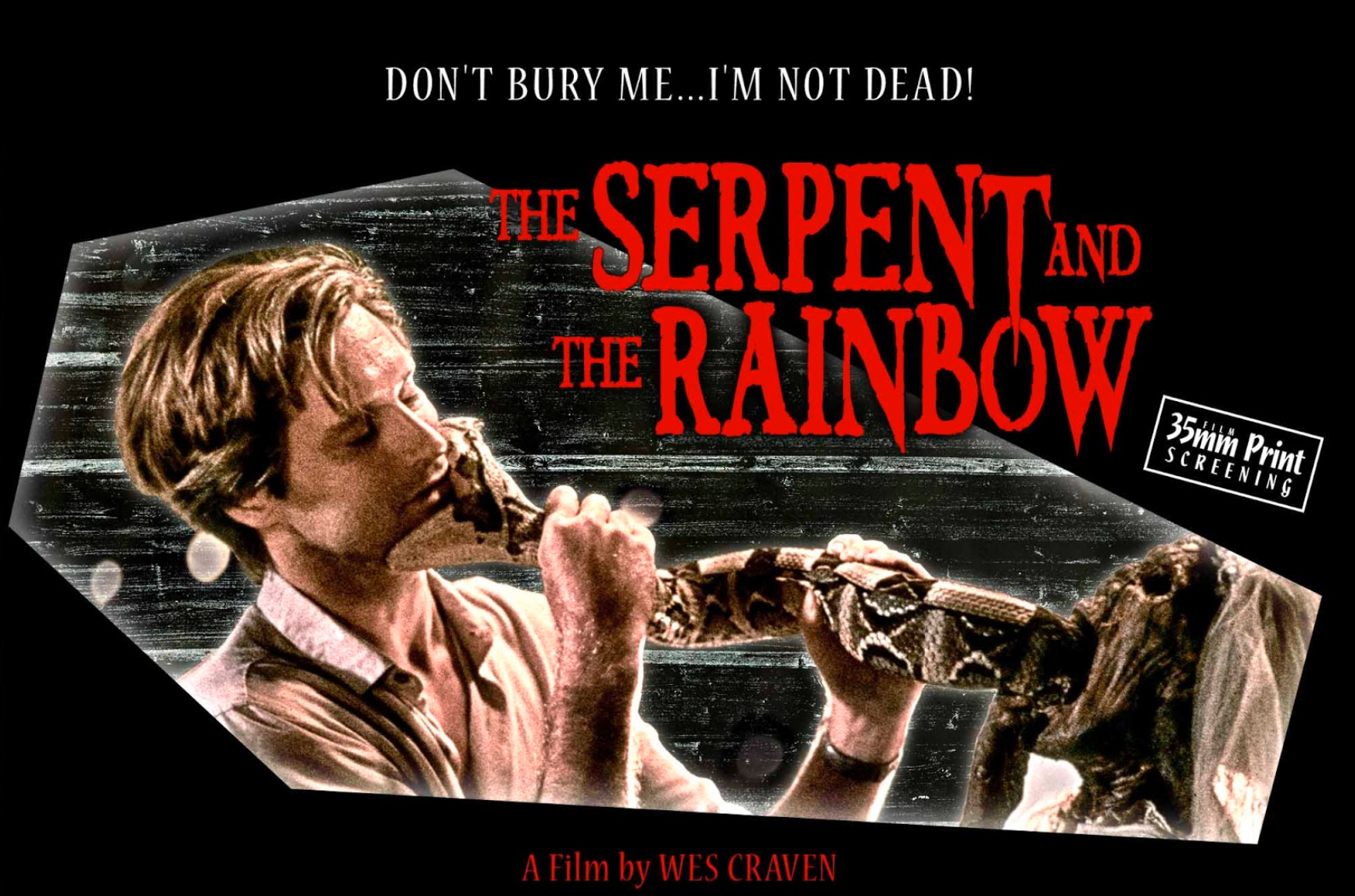 The Serpent And The Rainbow (1988) – Fantasy, Horror