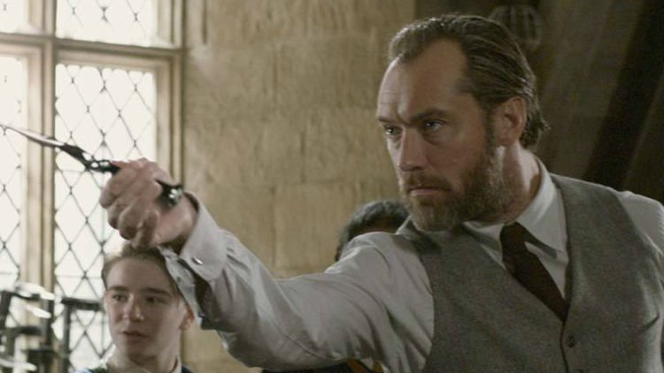 Jude Law Shares What J.K. Rowling Told Him About Dumbledore's Love For Newt Scamander