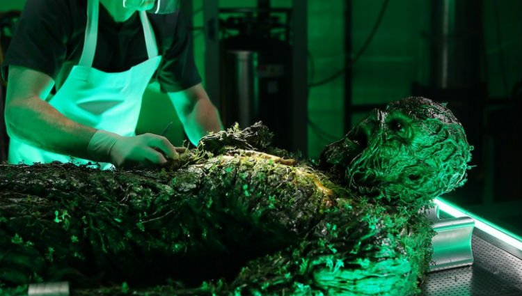 swamp thing the anatomy lesson